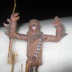 Another Wonderful Wookiee Wednesday